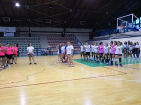 016 AtriCup2018 volley